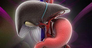 Hãy nghe Gan lên tiếng: Giải độc gan để có một cơ thể khoẻ mạnh dẻo dai