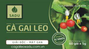 Hướng dẫn cách dùng Cà Gai Leo Sadu