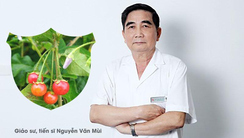 Giáo sư, tiến sĩ Nguyễn Văn Mùi