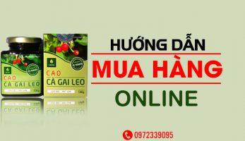Hướng dẫn mua Cà Gai Leo online chất lượng, đơn giản