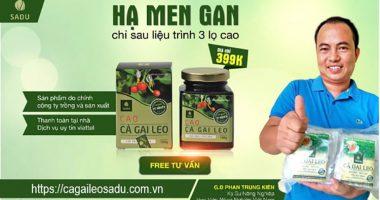 Câu chuyện về ông chủ Cà Gai Leo Phan Trung Kiên khó khăn, đơn độc