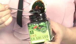 Sản phẩm Cà Gai Leo Sadu dược tính cao nhất thị trường
