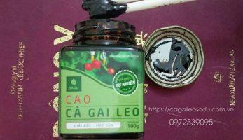 Cao Cà Gai Leo sản phẩm Dược Tính cao hỗ trợ trị bệnh về gan