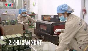 Phòng sản xuất cà gai leo sadu