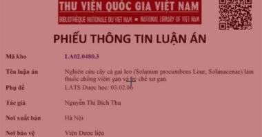 nghien-cuu-cay-ca-gai-leo-lam-thuoc-chong-viem-gan-uc-che-xo-gan